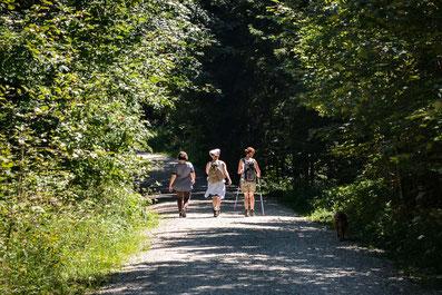 chiemgauer-alpen-ferienwohnung-gendarmerie-frauenwandern