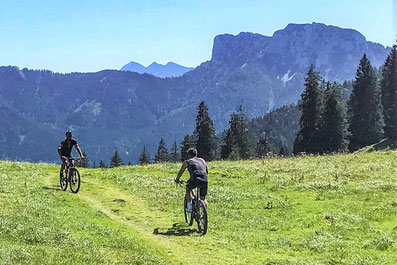 Mountainbike Chiemgauer Alpen