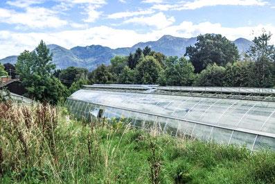 Kloster Seeon Ausflugsziel von der Alten Gendarmerie Übersee