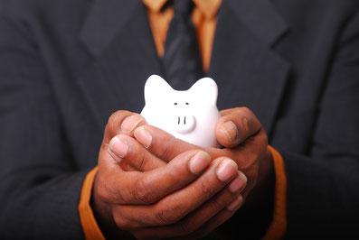 Sparen sparen sparen und nichts riskieren - das Erd-Schwein ist bodenständig und schlau