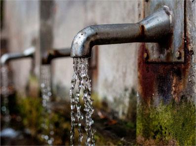 Pestizid-belastetes Wasser auch in Gossau ZH (Symbolbild)