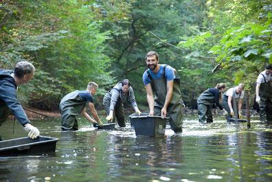 """Freiwillige Helfer bei einem Aktionstag des Projektes """"Lebendige Alster"""""""
