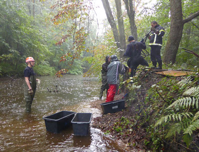 Freiwillige Helfer in Wathosen bei Wasser von unten und von oben