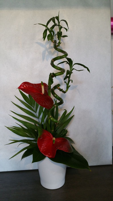 Composition  en hauteur anthuriums rouge et luky bamboo