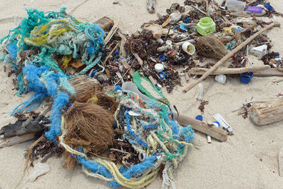 Aurba beach plastic pollution