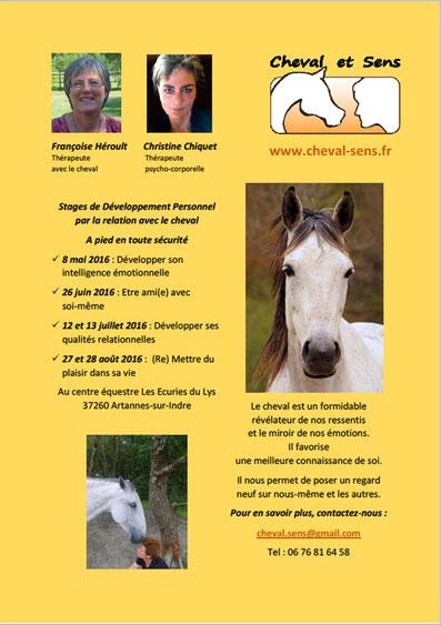 Stages de Développement Personnel avec le cheval Cheval et Sens