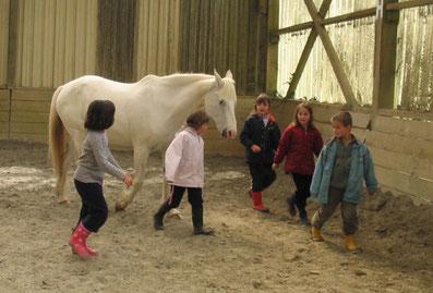 Les enfants ont su gagner la confiance du poney en liberté : il les suit... Un moment de plaisir très éducatif...