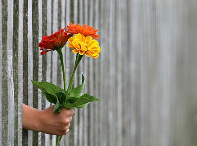 Regalo de 3 flores de colores con mano que sale de un muro