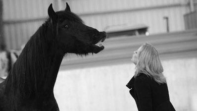 Alexandra Lohr, Pferdegestütztes Coaching, Horsemanship, Freiarbeit Pferd
