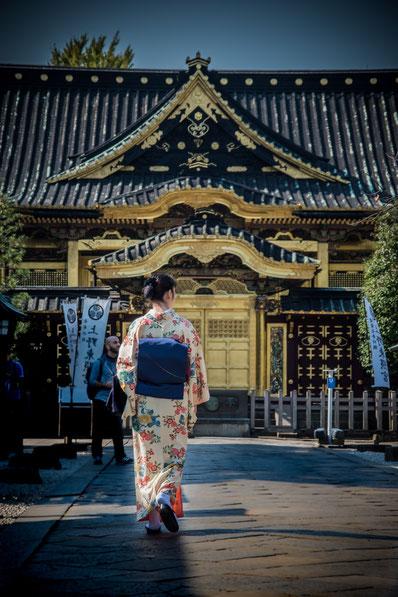 Il Santuario Toshogu al Parco di Ueno