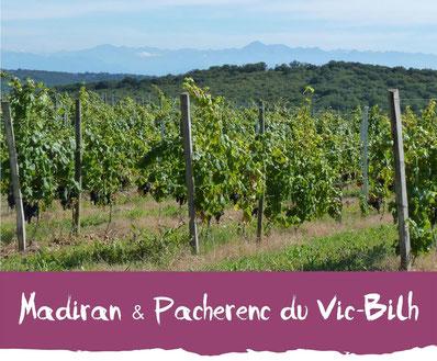 Madiran & Pacherenc du Vic-Bilh Tourisme Nord Béarn Madiran