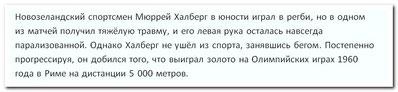 08.11.13 МЮРРЕЙ ХАЛБЕРГ