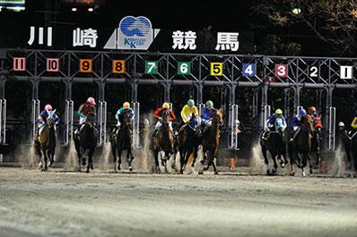 川崎競馬場バックヤード見学