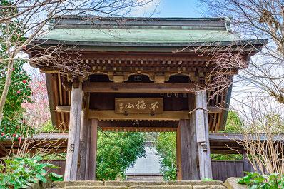 葉山周辺4寺めぐり
