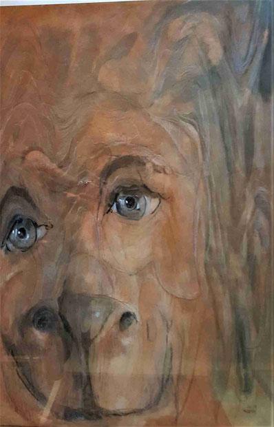 Löwenmensch / Buntstift u. Acryllasur auf Birkensperrholz / 70 x 50 cm
