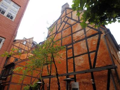 15世紀頃のゴシック建築を髣髴させる木造建物