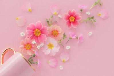 チョコレートでティータイム。ピンクのバラの小さなブーケ。