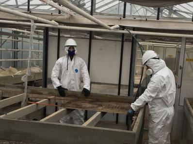 Asbestsanierung auf einer Baustelle in Hamburg in Schutzanzügen