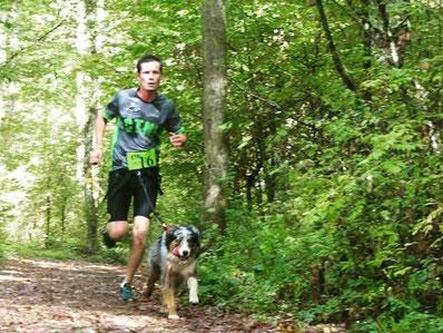 Canicross, course à pied, chien, berger australien