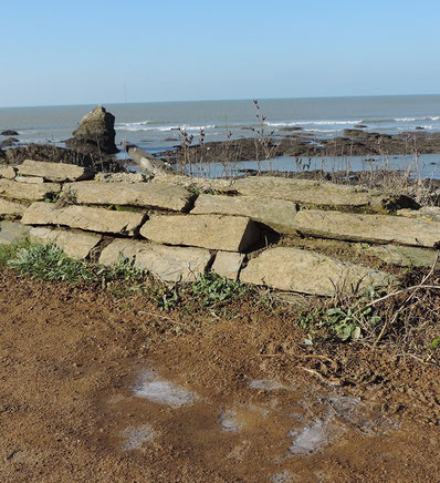 Terre, roche et mer