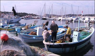 Pêche dans le Var à Six Fours