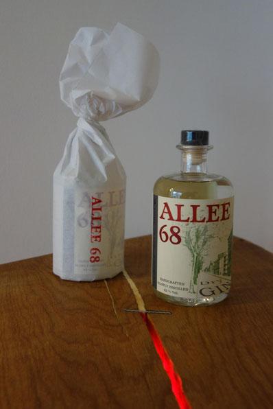 Gin-Flasche und Verpackung