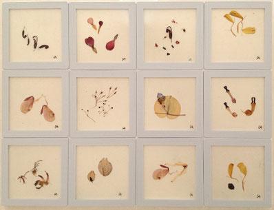 Uta Arnhardt, Papierarbeiten mit Pflanzenfragmenten