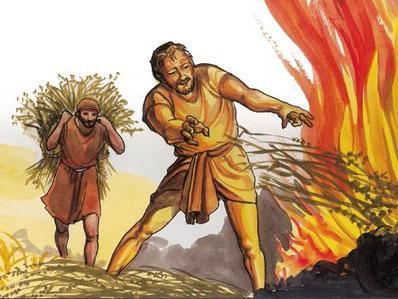 L'arbre qui ne produit pas de bons fruits est arraché et jeté au feu. La terre qui produit des buissons d'épines, des ronces et des chardons est jugée sans valeur, on finit par y mettre le feu. c'est à leurs fruits que l'on reconnaîtra les vrais chrétiens