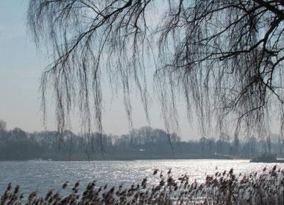 Spaziergang am Niederrhein - der Rhein
