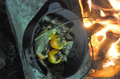 ダッチオーブン 焚火 里山 田舎暮らし