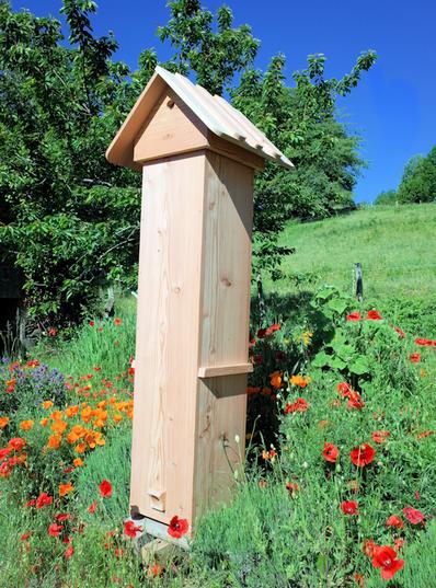 ruche refuge pour abeilles