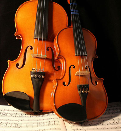 Geige lernen in Berlin