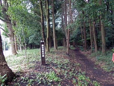 瀬谷市民の森入口