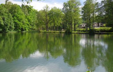 Blick auf den Eckhardt-Teich