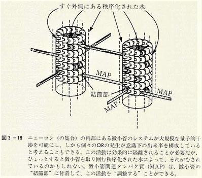 微小管のシステムが大規模な量子的干渉を可能にする?