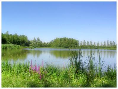 Teich beim Soldatenfriedhof - Étang de l'Embanie Andilly