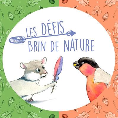 défis nature, activités nature pour les enfants