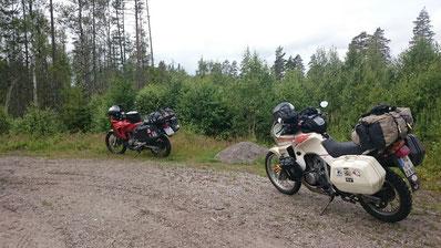 Schöne Wege und überall Wald