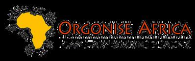 Zur Homepage von Orgonise Africa