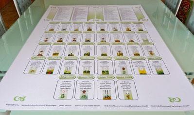"Kartenlegen erlernen die ""große Tafel"" 4x8 mit Lenormandkarten Abbildung"