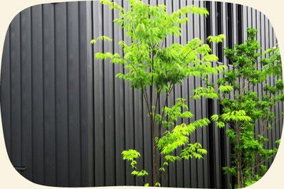 一般住宅のお庭の植木|浜松・湖西・磐田・豊橋