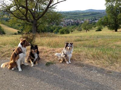 Wochenende in Ettenheim