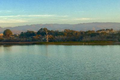 "Die Lagune von Maspalomas ""La Charca"""