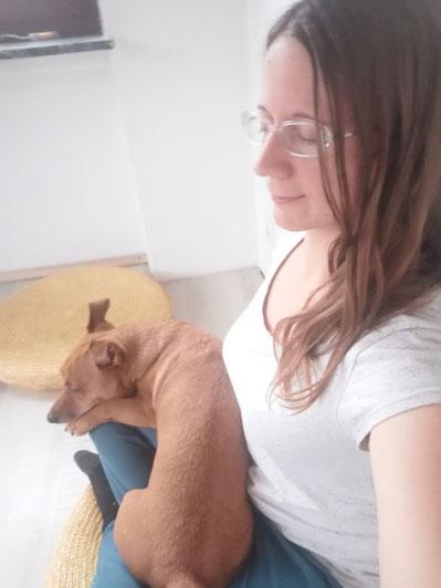 Hund soll still liegen - Hundetraining Bad Sooden-Allendorf