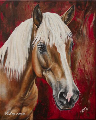 "Portrait Haflinger, Pferdegemälde ""Nanni"", Acryl,  roter Hintergrund"