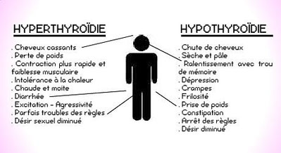 Trouble Thyroïde - Source doctissiomo.fr