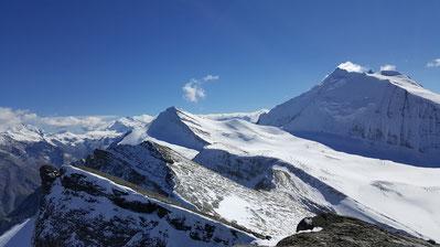 Barrhorn Walliser Alpen, Bergsteigen am Gletscher
