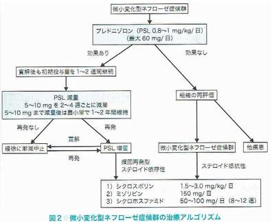 微小変化型ネフローゼ症候群の治療アルゴリズム