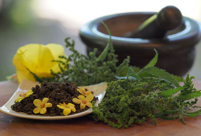 Wilde Kräuterküche - Brennesselkaviar