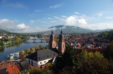 Miltenberg Panoramabild von Werner Reuling